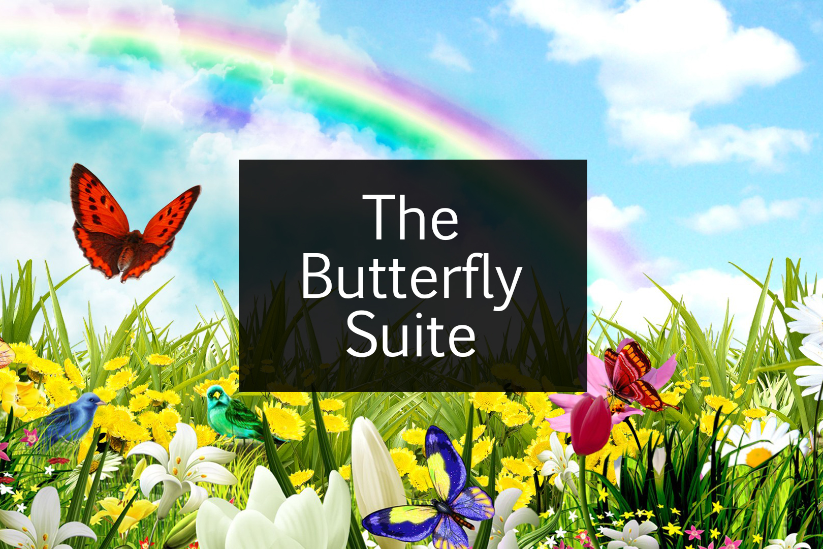 The Butterfly Suite