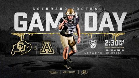 Gameday - Arizona 01.jpg