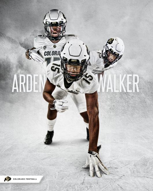 Arden Walker - Poster 01.jpg