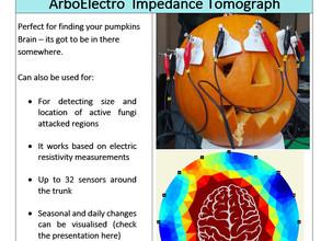 'Boris' The Pumpkin Results