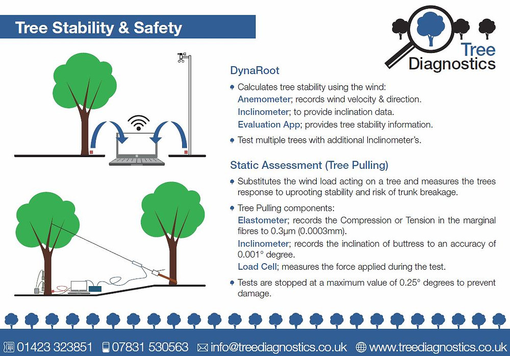 Overview of Dynaroot and Static assessment