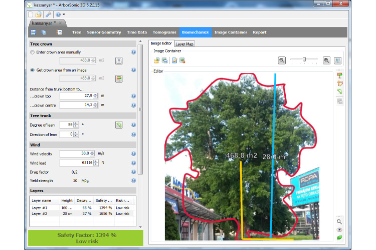 Photograph the tree, work out 'virtual pruning' required. Part of the Arborsonic software
