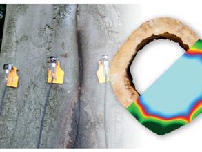 Tree tomography - Arborsonic