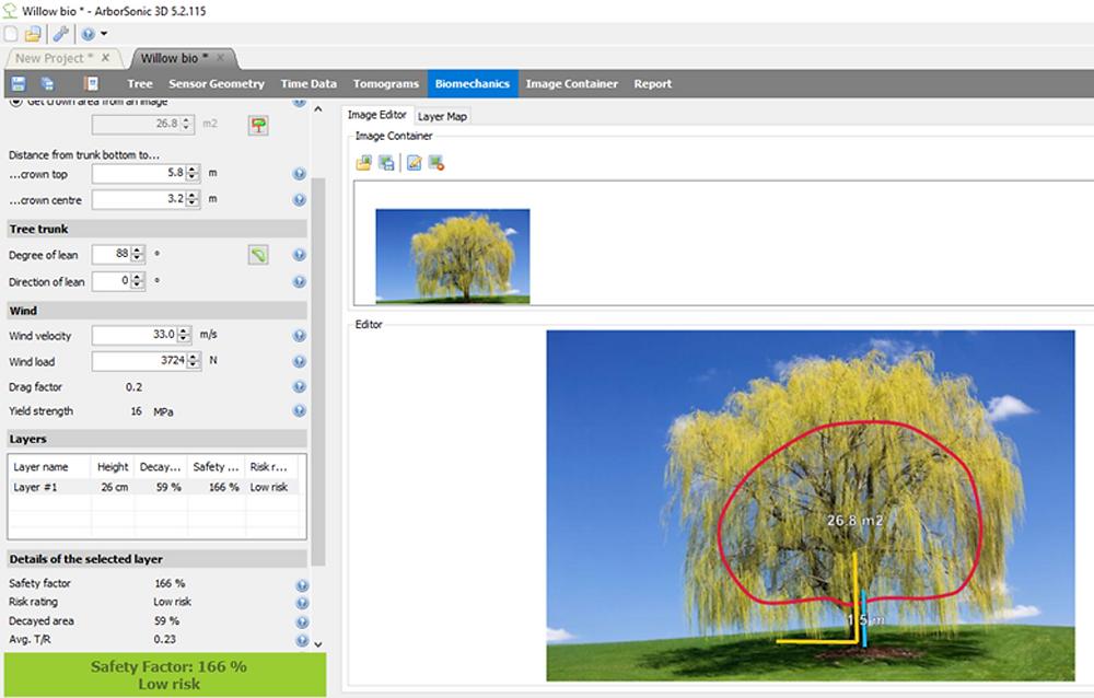 Crown area measurements - software