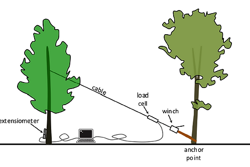 """Kit B Pulling Test Device """"elasto"""" for tree trunk stability evaluation"""
