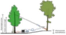 Static Tree Pull and Dynaroot - Fakopp