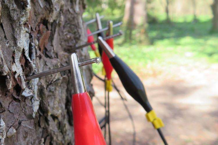 ArborElectro clips