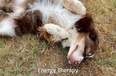 Energy Therapy (1).png