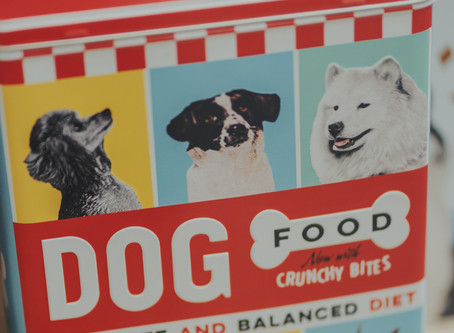 How To Become The Ultimate Dog Food Label Superstar!