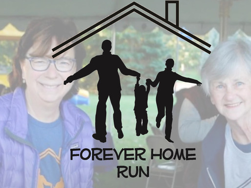 """Part 3: The """"Why"""" Behind the Forever Home Run: Volunteer Edition"""