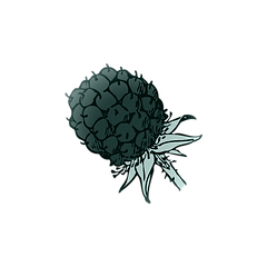 blackberry (1).png