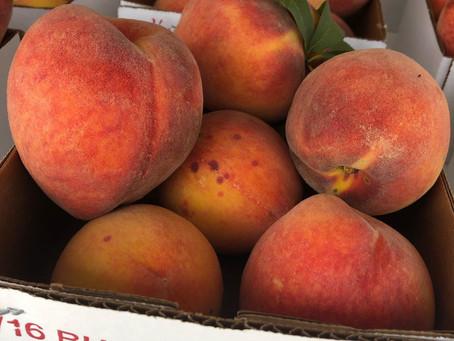 Loring Peaches