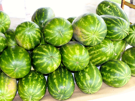 Melons, Melons, Melons