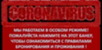 Коронавирус 22.png