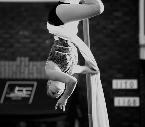 circus---cirque---feq-2016---laubergine-