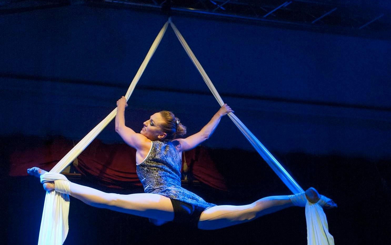 Aerial Silk Julie Lavergne.jpeg
