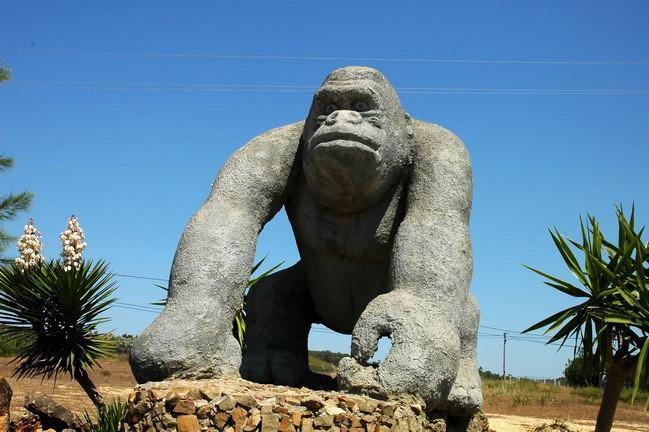 Интересные места Португалии, зоопарк в Лагуше
