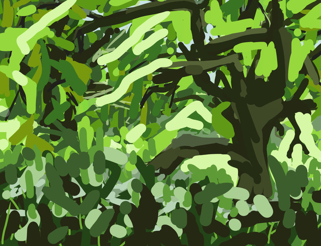 Trees along the River Exe No7 - 15 cm x 11.5 cm - iPad Drawing
