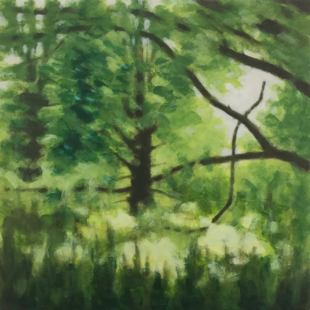Trees along the River Exe No1 - 60 cm x 60 cm - Acrylic paint on plywood