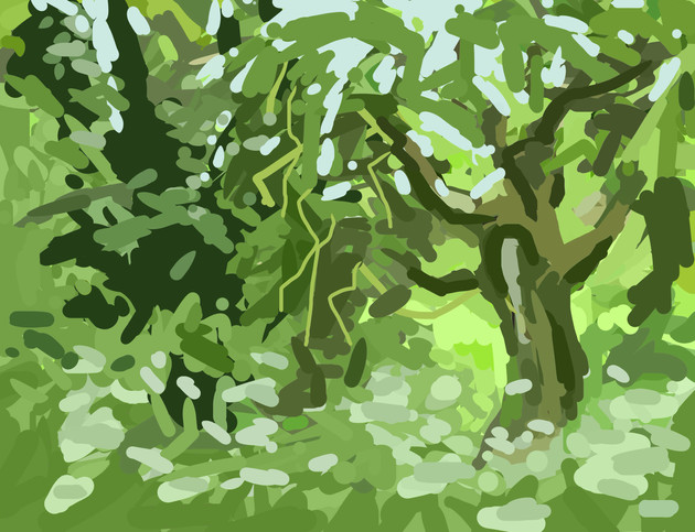 Trees along the River Exe No2 - 15 cm x 11.5 cm - iPad Drawing