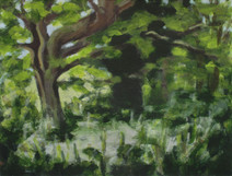Trees along the River Exe No6 - 19.2 cm x 25.5 cm - Acrylic paint on white board
