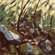Woodland in Tuscany.- 35cm x 35 cm - Digital Painting