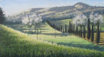 Borgo Pignano No4 - 67.2 cm x 122 cm - Acrylic paint on plywood