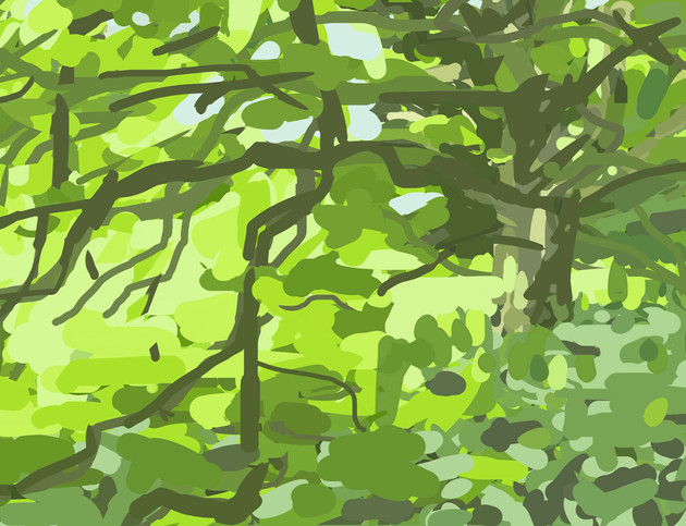 Trees along the River Exe No3 - 15 cm x 11.5 cm - iPad Drawing