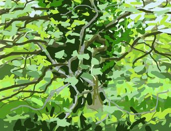 Trees along the River Exe No1 - 15 cm x 11.5 cm - iPad Digital drawing