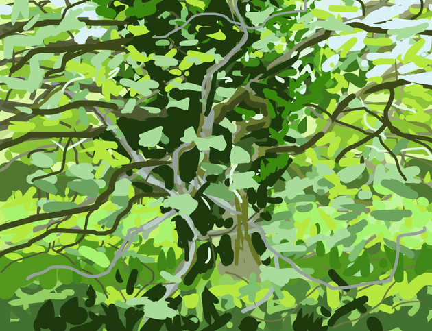 Trees along the River Exe No1 - 15 cm x 11.5 cm - iPad Drawing