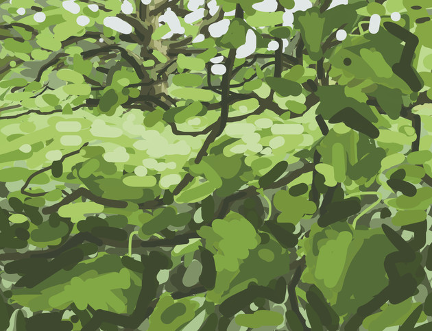 Trees along the River Exe No8 - 15 cm x 11.5 cm - iPad Drawing