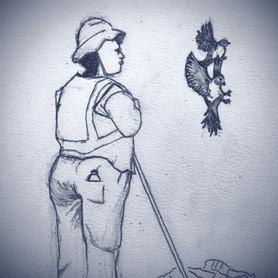 Roadside waste collector with pied crows, Cradock