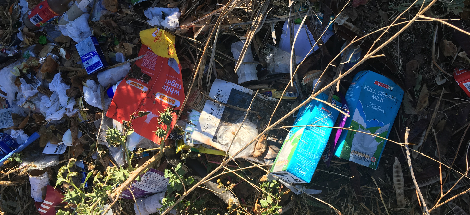 Pile of roadside waste, Somerset East