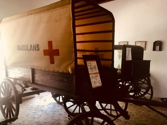 Medical history in Graaff Reinet