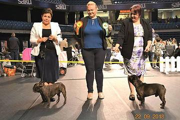2019_09_22 International dog show Tallin