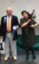 2018_10_21 National all breed dog show i