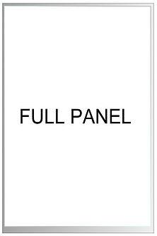 full panel sliding door