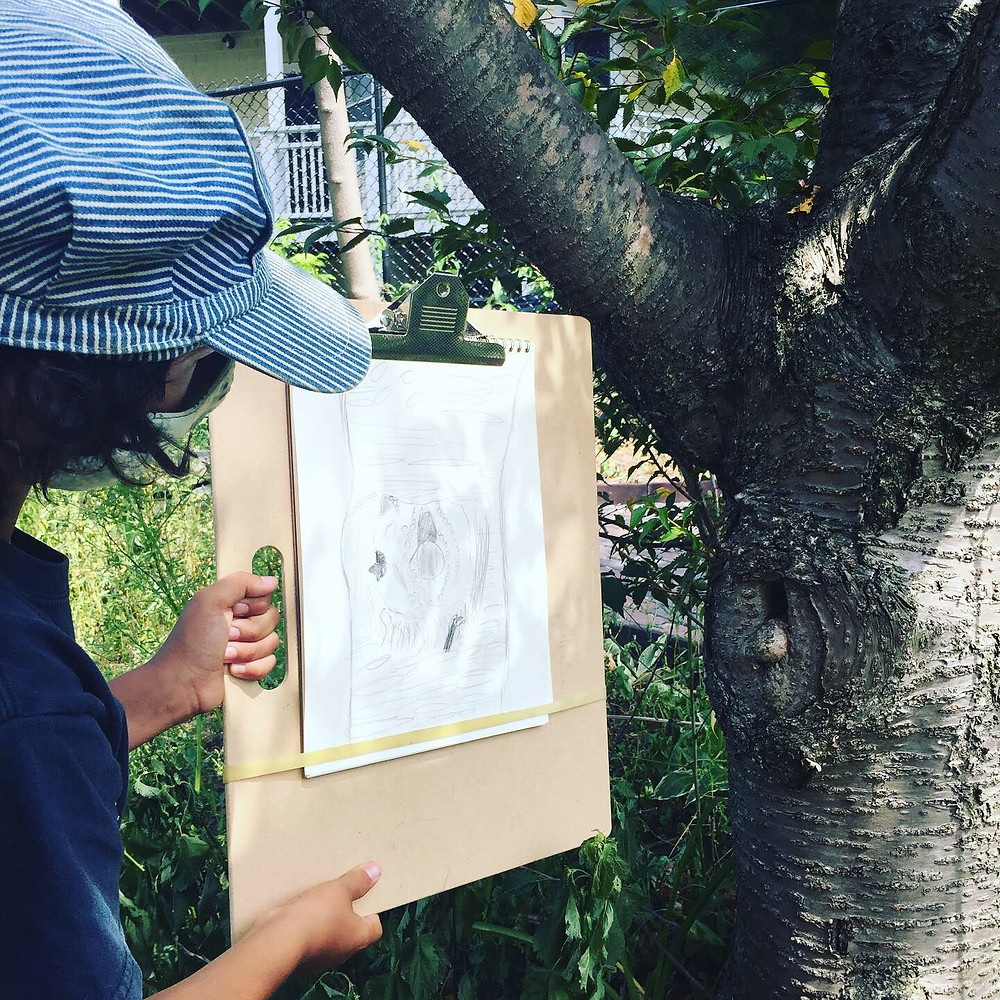 A child displays a drawing of a tree in the garden.