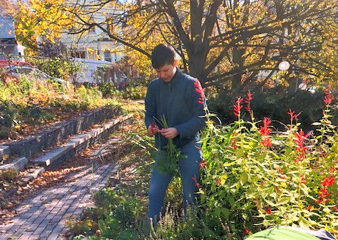 Gardening at the Growing Center last fall.