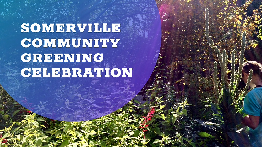 Somerville Community Greening Celebration banner