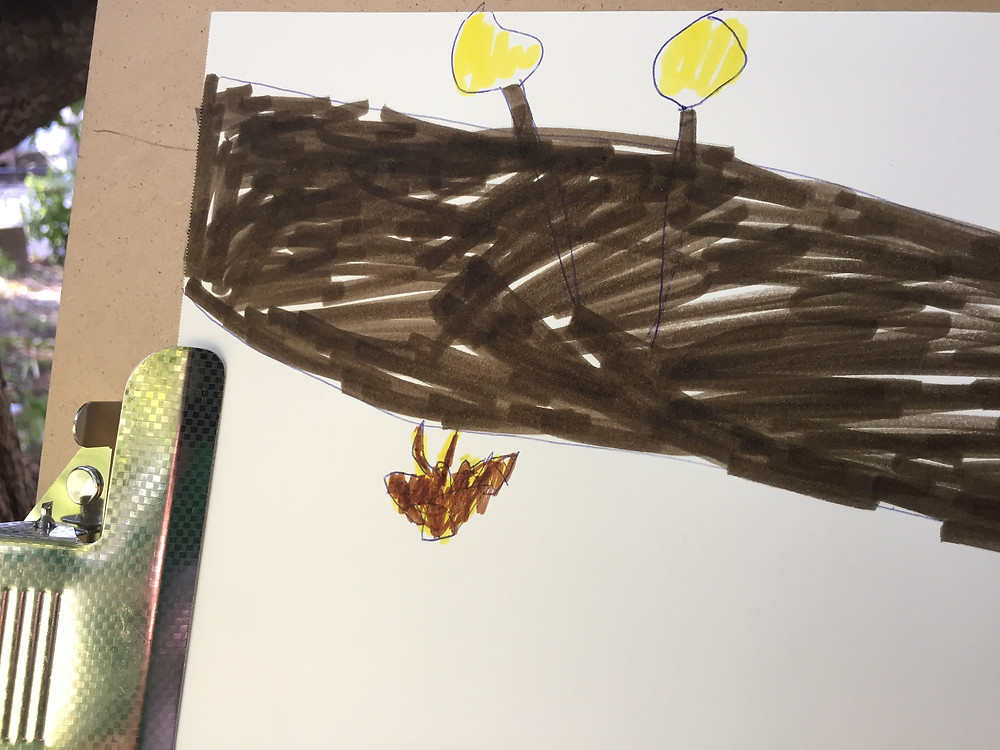 A child's drawing of the cicada.