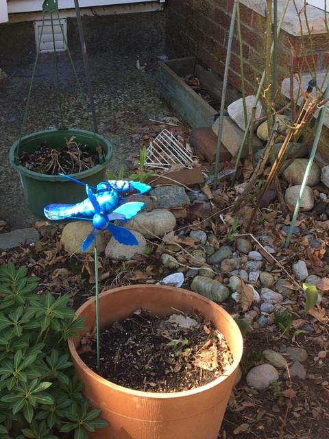 Since it was a bit windy, we got to see the bluebird pinwheel's wings flutter!