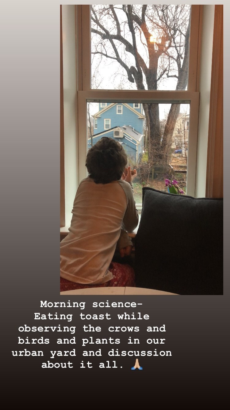 Morning science–Eating toast while observing the crows and birds and plants in our urban yard and discussion about it all.