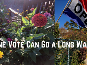 With Your Vote, We Can Win a Gardens For Good Grant!