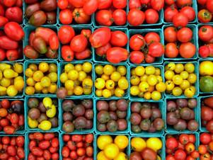 Organic Seed Sale Fundraiser