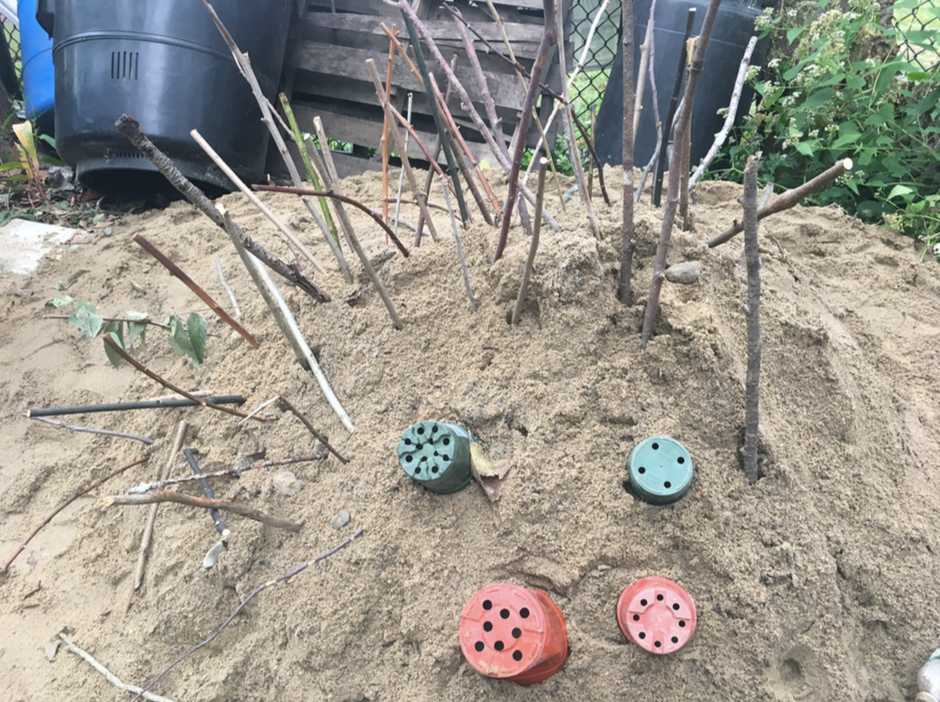 A sandpile at the Growing Center decorated by kids with sticks and plant containers.