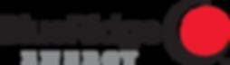 Blue Ridge Energy Logo.png