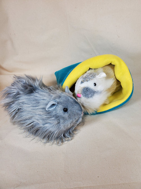 Guinea Pigs - Monday Dec 28th - 9-11:30am