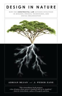 """""""Design in Nature"""" Adrian Bejan"""