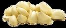 garlic_edited_edited.png